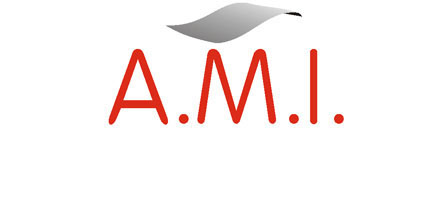 Logo - ATELIER DE METALLERIE INDUSTRIELLE (AMI)