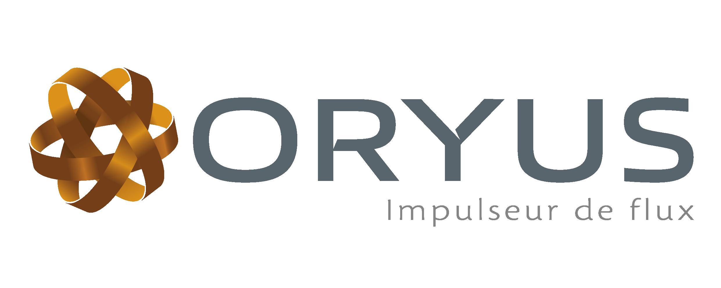Logo - RE-FLEX / ORYUS